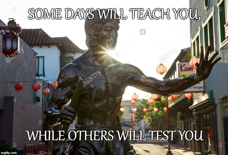 SOME DAYS WILL TEACH YOU, WHILE OTHERS WILL TEST YOU | image tagged in bruce lee | made w/ Imgflip meme maker
