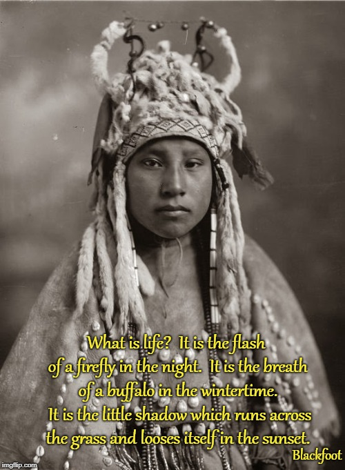 Blackfoot Woman | What is life?  It is the flash of a firefly in the night.  It is the breath of a buffalo in the wintertime.  It is the little shadow which r | image tagged in native american,native americans,american indian,native american quotes,tribe | made w/ Imgflip meme maker