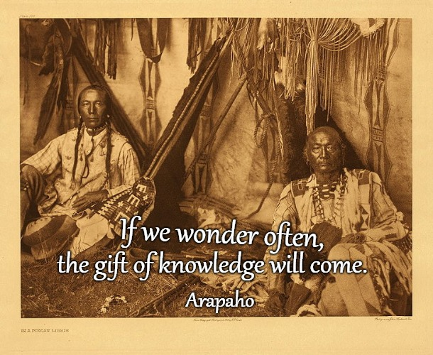 Arapaho Indian Saying |  If we wonder often, the gift of knowledge will come. Arapaho | image tagged in native america,native americans,american indian,tribe,arapaho | made w/ Imgflip meme maker