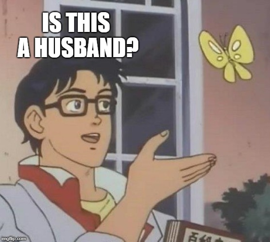 Is This A Pigeon Meme | IS THIS A HUSBAND? | image tagged in memes,is this a pigeon | made w/ Imgflip meme maker