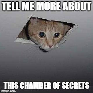 TELL ME MORE ABOUT THIS CHAMBER OF SECRETS | made w/ Imgflip meme maker