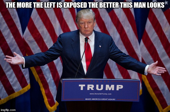 Donald Trump | THE MORE THE LEFT IS EXPOSED THE BETTER THIS MAN LOOKS | image tagged in donald trump | made w/ Imgflip meme maker