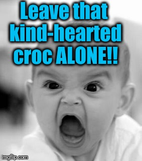 Angry Baby Meme | Leave that kind-hearted croc ALONE!! | image tagged in memes,angry baby | made w/ Imgflip meme maker