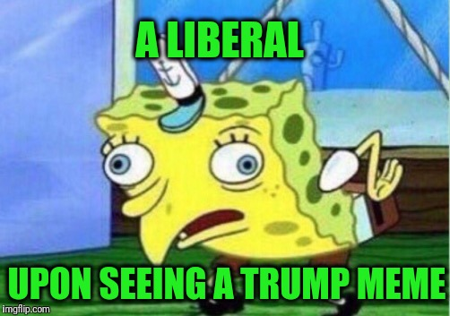 Mocking Spongebob Meme | A LIBERAL UPON SEEING A TRUMP MEME | image tagged in memes,mocking spongebob | made w/ Imgflip meme maker