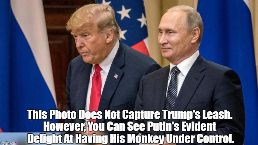 """Putin's Monkey"" 