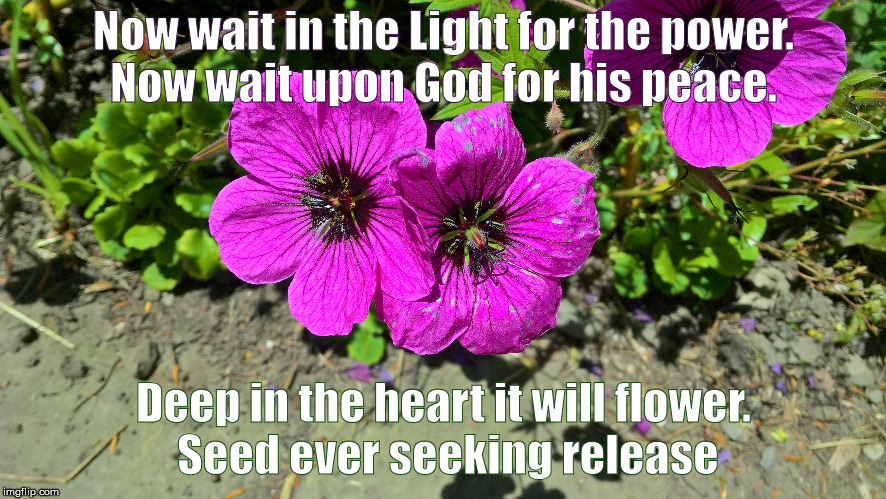Quaker | Now wait in the Light for the power. Now wait upon God for his peace. Deep in the heart it will flower. Seed ever seeking release | image tagged in inspirational quote | made w/ Imgflip meme maker