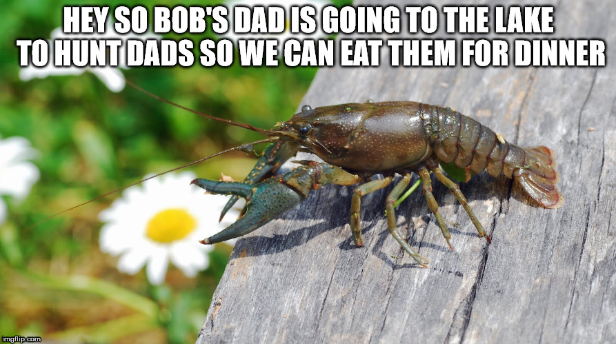 dad hunting | HEY SO BOB'S DAD IS GOING TO THE LAKE TO HUNT DADS SO WE CAN EAT THEM FOR DINNER | image tagged in crawdad,dad,funny,memes | made w/ Imgflip meme maker
