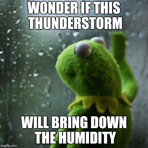 It's Not The Heat | WONDER IF THIS THUNDERSTORM WILL BRING DOWN THE HUMIDITY | image tagged in sometimes i wonder,kermit,thunderstorm,heat,humidity | made w/ Imgflip meme maker