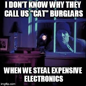 "Burglar  | I DON'T KNOW WHY THEY CALL US ""CAT"" BURGLARS WHEN WE STEAL EXPENSIVE ELECTRONICS 