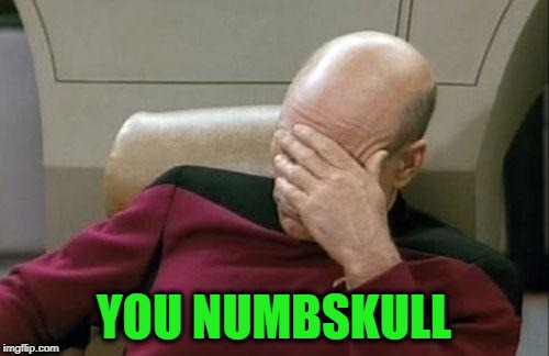 Captain Picard Facepalm Meme | YOU NUMBSKULL | image tagged in memes,captain picard facepalm | made w/ Imgflip meme maker