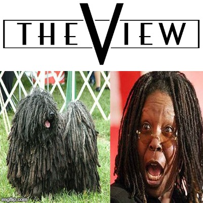 The View: Poor Doggie | image tagged in whoopi goldberg,animal cruelty,bitches everywhere | made w/ Imgflip meme maker