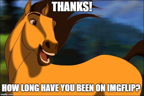 Spirit | THANKS! HOW LONG HAVE YOU BEEN ON IMGFLIP? | image tagged in spirit | made w/ Imgflip meme maker