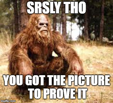 bigfoot | SRSLY THO YOU GOT THE PICTURE TO PROVE IT | image tagged in bigfoot | made w/ Imgflip meme maker