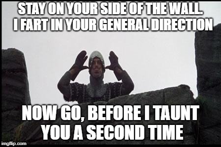 Letting Monty have his say |  STAY ON YOUR SIDE OF THE WALL.  I FART IN YOUR GENERAL DIRECTION; NOW GO, BEFORE I TAUNT YOU A SECOND TIME | image tagged in french taunting in monty python's holy grail,build a wall,illegal immigration,political meme | made w/ Imgflip meme maker