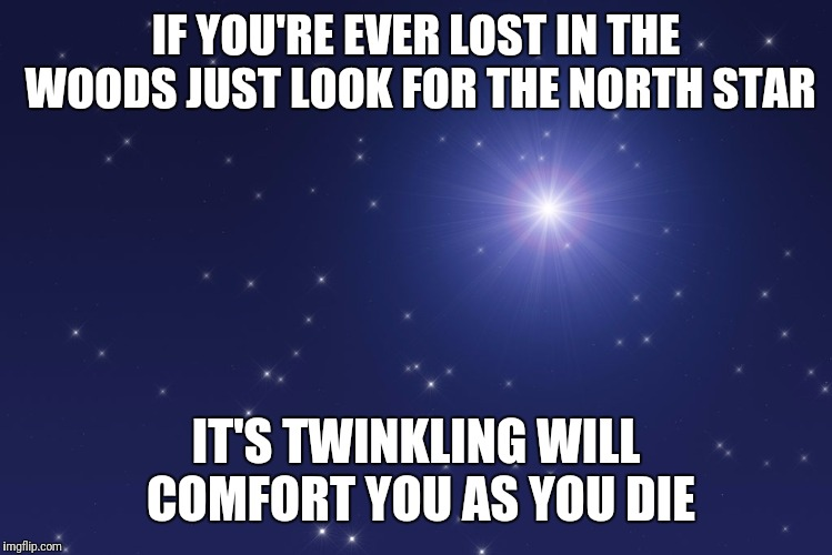 Sage Advice | IF YOU'RE EVER LOST IN THE WOODS JUST LOOK FOR THE NORTH STAR IT'S TWINKLING WILL COMFORT YOU AS YOU DIE | image tagged in memes,funny,lost,woods,north star,flarp | made w/ Imgflip meme maker