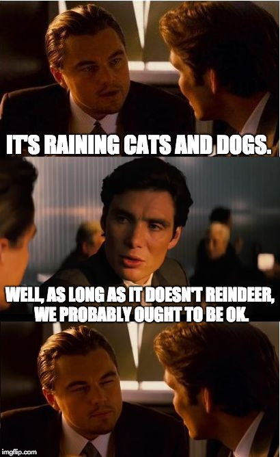 Inception Meme | IT'S RAINING CATS AND DOGS. WELL, AS LONG AS IT DOESN'T REINDEER, WE PROBABLY OUGHT TO BE OK. | image tagged in memes,inception | made w/ Imgflip meme maker