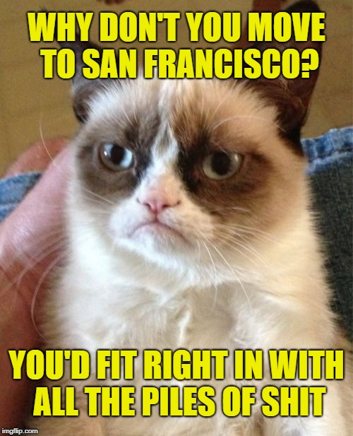 Grumpy Cat Insult | WHY DON'T YOU MOVE TO SAN FRANCISCO? YOU'D FIT RIGHT IN WITH ALL THE PILES OF SHIT | image tagged in memes,grumpy cat,nsfw,sick,shithole | made w/ Imgflip meme maker
