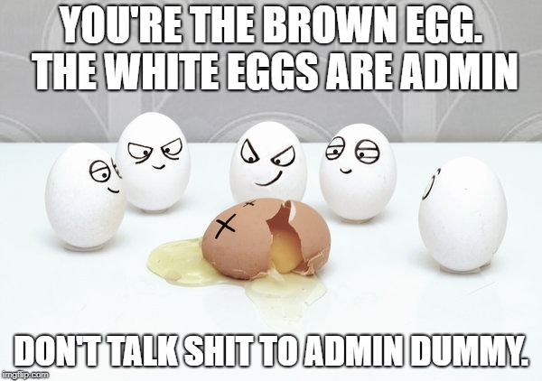 YOU'RE THE BROWN EGG. THE WHITE EGGS ARE ADMIN DON'T TALK SHIT TO ADMIN DUMMY. | image tagged in bullying | made w/ Imgflip meme maker