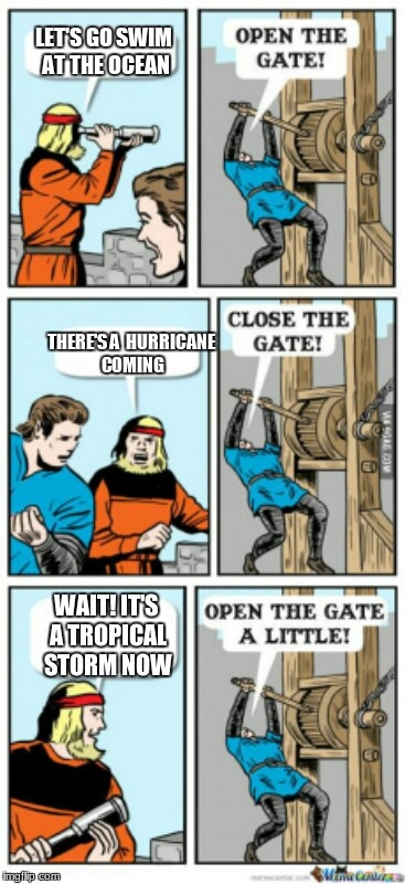 Open the gate a little | LET'S GO SWIM AT THE OCEAN THERE'S A  HURRICANE COMING WAIT! IT'S A TROPICAL STORM NOW | image tagged in open the gate a little | made w/ Imgflip meme maker