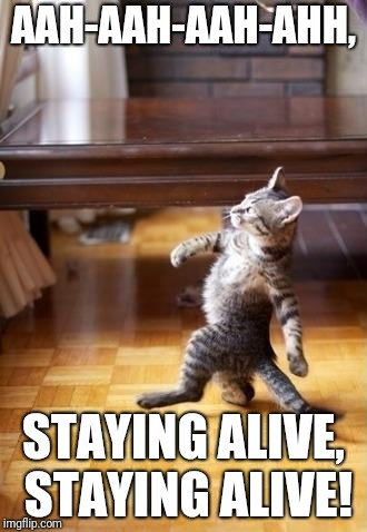 Cool Cat Stroll | AAH-AAH-AAH-AHH, STAYING ALIVE, STAYING ALIVE! | image tagged in memes,cool cat stroll | made w/ Imgflip meme maker