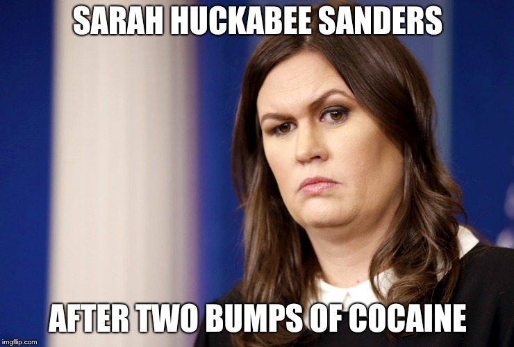 Sarah Sanders | SARAH HUCKABEE SANDERS AFTER TWO BUMPS OF COCAINE | image tagged in sarah sanders | made w/ Imgflip meme maker