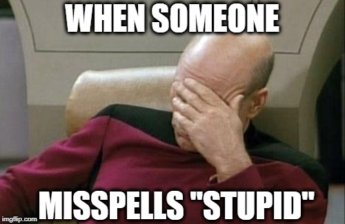 "Captain Picard Facepalm Meme | WHEN SOMEONE MISSPELLS ""STUPID"" 