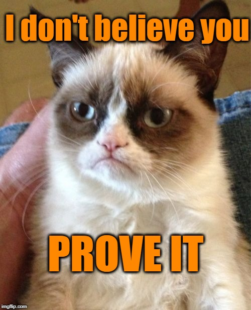 Grumpy Cat Meme | I don't believe you PROVE IT | image tagged in memes,grumpy cat | made w/ Imgflip meme maker