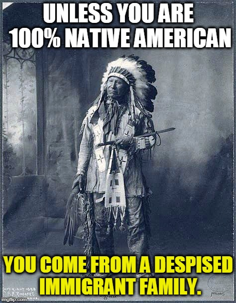 Are You 100% Native American? | UNLESS YOU ARE 100% NATIVE AMERICAN YOU COME FROM A DESPISED IMMIGRANT FAMILY. | image tagged in 100,native american,immigrant,family | made w/ Imgflip meme maker