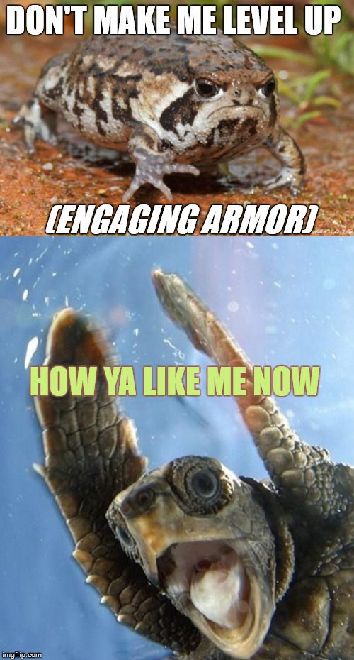 Grumpy Frog Suits Up | DON'T MAKE ME LEVEL UP (ENGAGING ARMOR) HOW YA LIKE ME NOW | image tagged in memes,animals,transformation,stupid humor | made w/ Imgflip meme maker