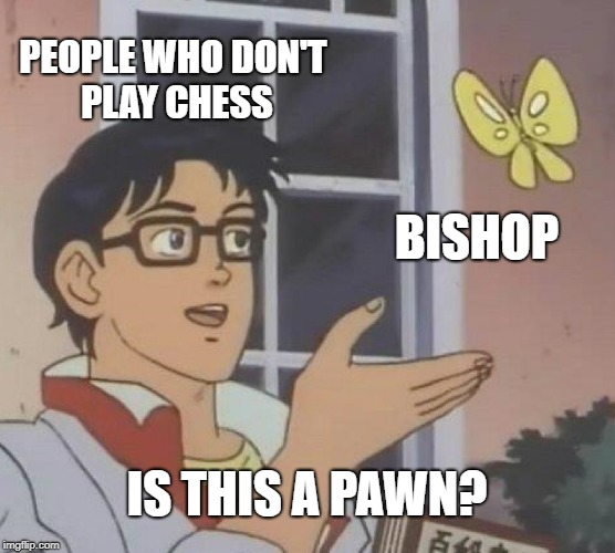 Is this a good meme? | PEOPLE WHO DON'T PLAY CHESS BISHOP IS THIS A PAWN? | image tagged in memes,is this a pigeon | made w/ Imgflip meme maker