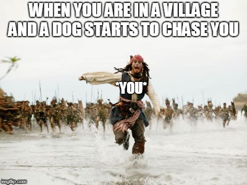 RUN | WHEN YOU ARE IN A VILLAGE AND A DOG STARTS TO CHASE YOU *YOU* | image tagged in memes,jack sparrow being chased | made w/ Imgflip meme maker