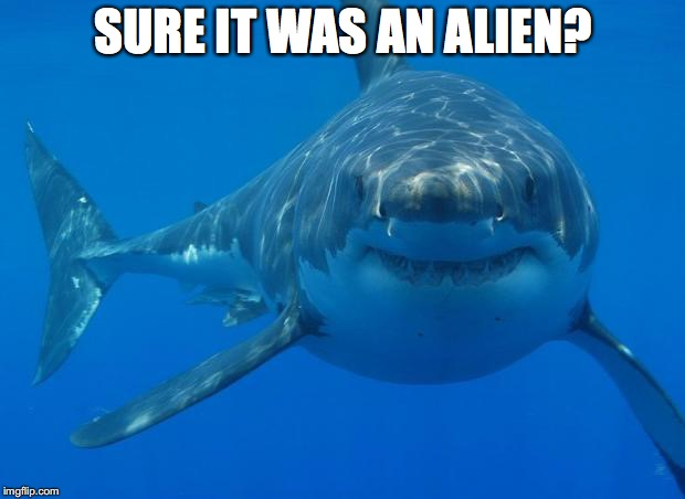 Straight White Shark | SURE IT WAS AN ALIEN? | image tagged in straight white shark | made w/ Imgflip meme maker