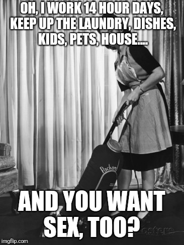 OH, I WORK 14 HOUR DAYS, KEEP UP THE LAUNDRY, DISHES, KIDS, PETS, HOUSE.... AND YOU WANT SEX, TOO? | image tagged in 50's housework | made w/ Imgflip meme maker