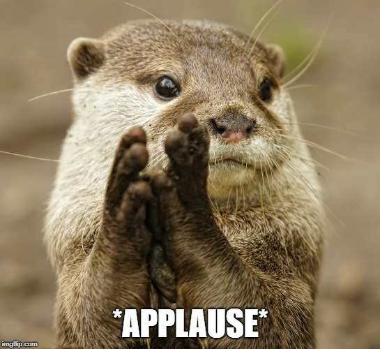 Squirrel Applause | *APPLAUSE* | image tagged in squirrel applause | made w/ Imgflip meme maker