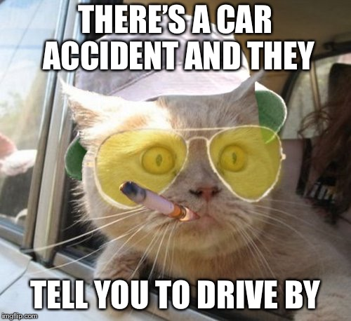 Fear And Loathing Cat Meme | THERE'S A CAR ACCIDENT AND THEY TELL YOU TO DRIVE BY | image tagged in memes,fear and loathing cat | made w/ Imgflip meme maker