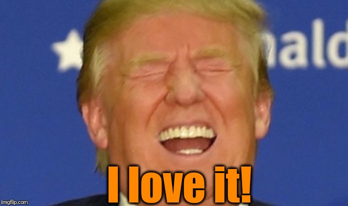 Trump laughing | I love it! | image tagged in trump laughing | made w/ Imgflip meme maker
