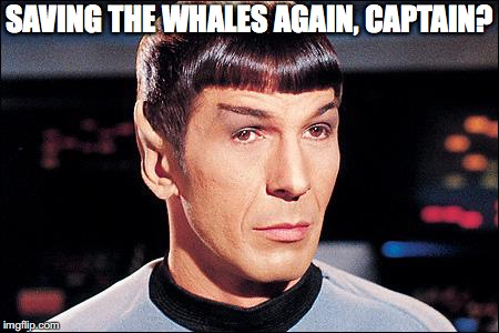 Condescending Spock | SAVING THE WHALES AGAIN, CAPTAIN? | image tagged in condescending spock | made w/ Imgflip meme maker