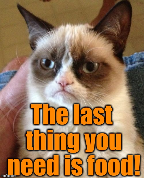Grumpy Cat Meme | The last thing you need is food! | image tagged in memes,grumpy cat | made w/ Imgflip meme maker