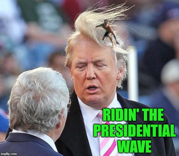 Livin' in America be like.... | RIDIN' THE PRESIDENTIAL WAVE | image tagged in presidential wave,memes,donald trump,funny,bad rug,president | made w/ Imgflip meme maker