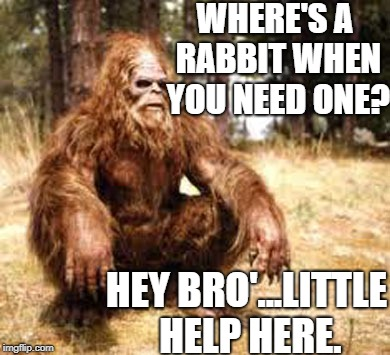 hey bro' | WHERE'S A RABBIT WHEN YOU NEED ONE? HEY BRO'...LITTLE HELP HERE. | image tagged in bigfoot | made w/ Imgflip meme maker