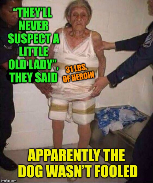 "Bad Grandma | ""THEY'LL NEVER SUSPECT A LITTLE OLD LADY"", THEY SAID APPARENTLY THE DOG WASN'T FOOLED 31 LBS. OF HEROIN 