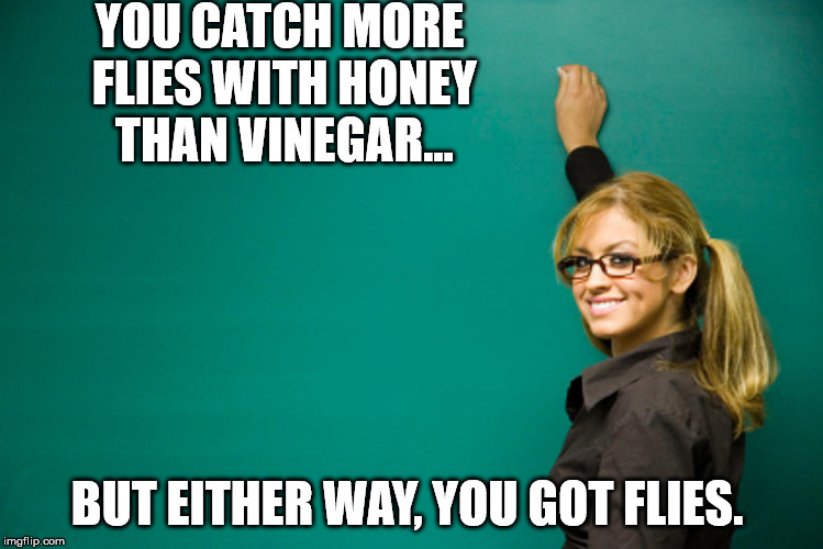 Flies are not good. | YOU CATCH MORE FLIES WITH HONEY THAN VINEGAR... BUT EITHER WAY, YOU GOT FLIES. | image tagged in teacher,lord of the flies | made w/ Imgflip meme maker