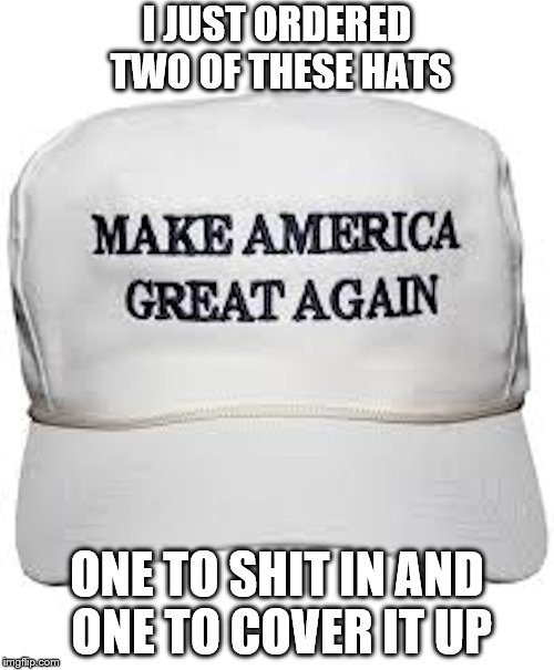 And then mail it to 45. Make Asshole Go Away! | I JUST ORDERED TWO OF THESE HATS ONE TO SHIT IN AND ONE TO COVER IT UP | image tagged in trump hat,memes,political meme,dump trump,treason | made w/ Imgflip meme maker