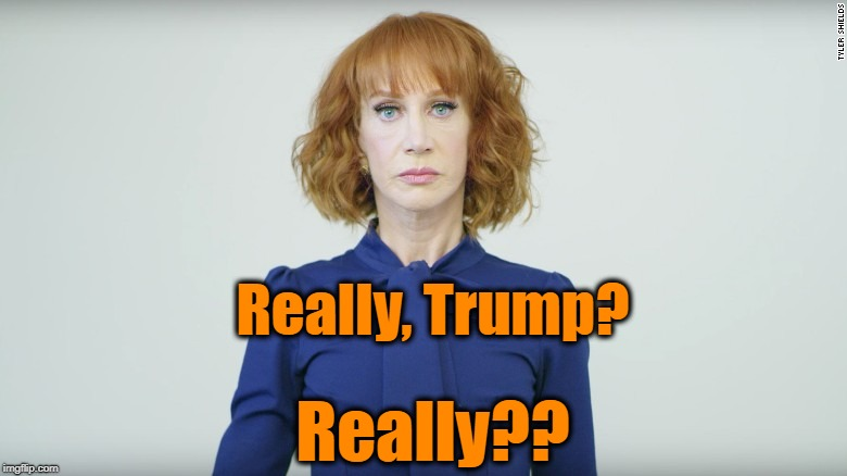 Kathy Griffin  | Really?? Really, Trump? | image tagged in kathy griffin | made w/ Imgflip meme maker