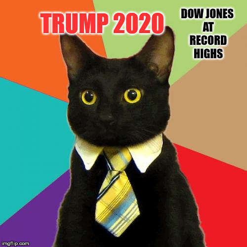 Business Cat | DOW JONES AT RECORD HIGHS TRUMP 2020 | image tagged in memes,business cat | made w/ Imgflip meme maker