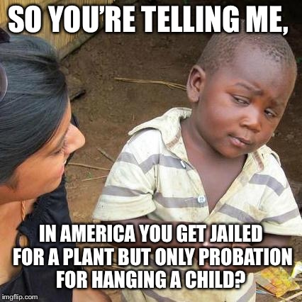 Third World Skeptical Kid Meme | SO YOU'RE TELLING ME, IN AMERICA YOU GET JAILED FOR A PLANT BUT ONLY PROBATION FOR HANGING A CHILD? | image tagged in memes,third world skeptical kid | made w/ Imgflip meme maker
