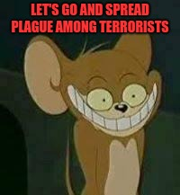 crazy mouse | LET'S GO AND SPREAD PLAGUE AMONG TERRORISTS | image tagged in crazy mouse | made w/ Imgflip meme maker