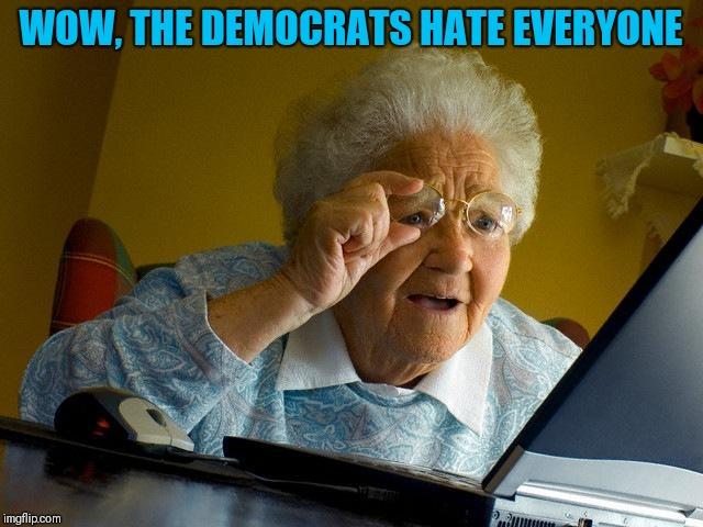 Grandma Finds The Internet Meme | WOW, THE DEMOCRATS HATE EVERYONE | image tagged in memes,grandma finds the internet | made w/ Imgflip meme maker