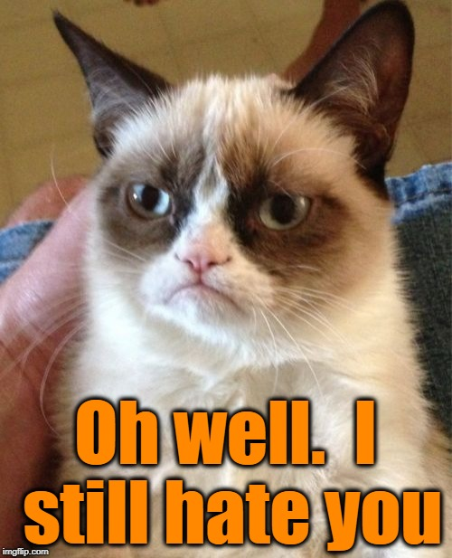 Grumpy Cat Meme | Oh well.  I still hate you | image tagged in memes,grumpy cat | made w/ Imgflip meme maker