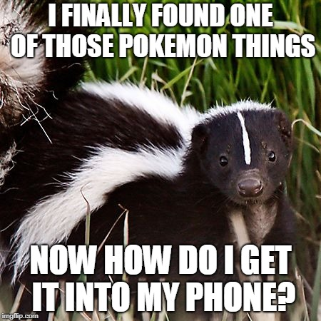 skunk | I FINALLY FOUND ONE OF THOSE POKEMON THINGS NOW HOW DO I GET IT INTO MY PHONE? | image tagged in skunk | made w/ Imgflip meme maker